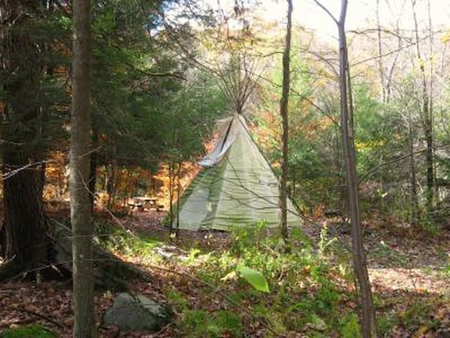 Tipi (teepee) at Abrams Creek - Elk Garden - Tenda Tipi