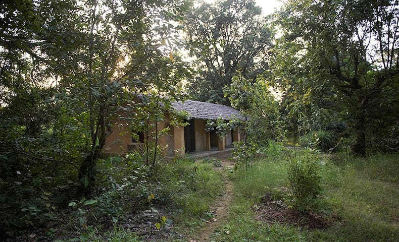 Kamp Kamouflage Kanha Jungle Homestay