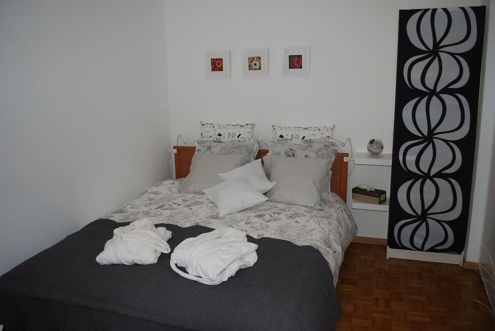 Jolie chambre pour deux personnes appartements louer for Chambre geneve