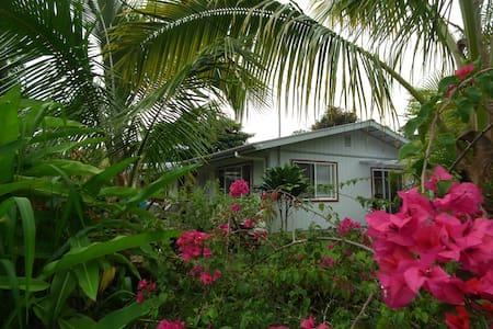 Leilani Rainforest Cottage