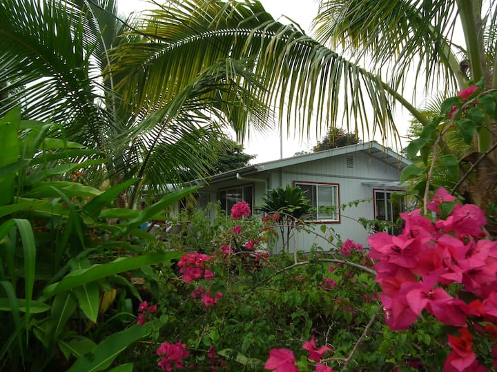Leilani Rainforest Cottage
