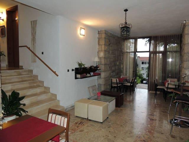 Villa Zvonka Sokol Brela #1