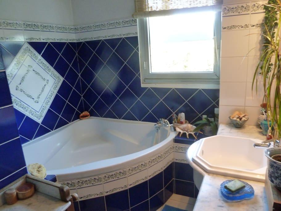 Salle de bain avec baignoire d'angle, exposée plein sud. Très appréciée par les locataires !