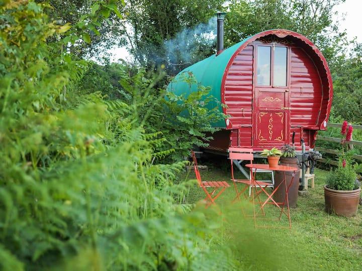 Gypsy Caravan & Sauna