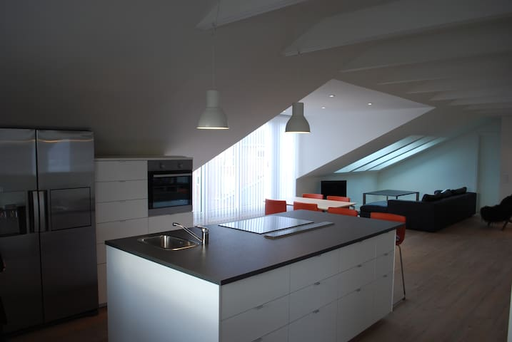 Penthouse 2. floor. Esbjerg - Esbjerg - Apartment