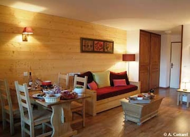 High Quality Alpine Apartment in Heart of the Alps - Brides-les-Bains - Apartment