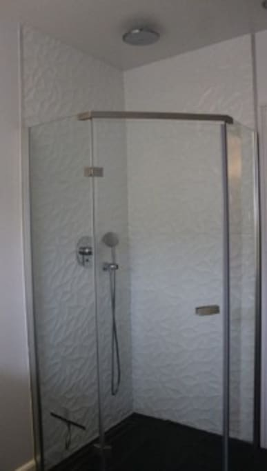 raindance shower 2nd floor bathroom