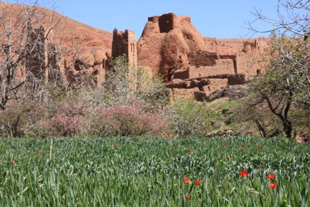 Vue sur les ruines de l'ancien village