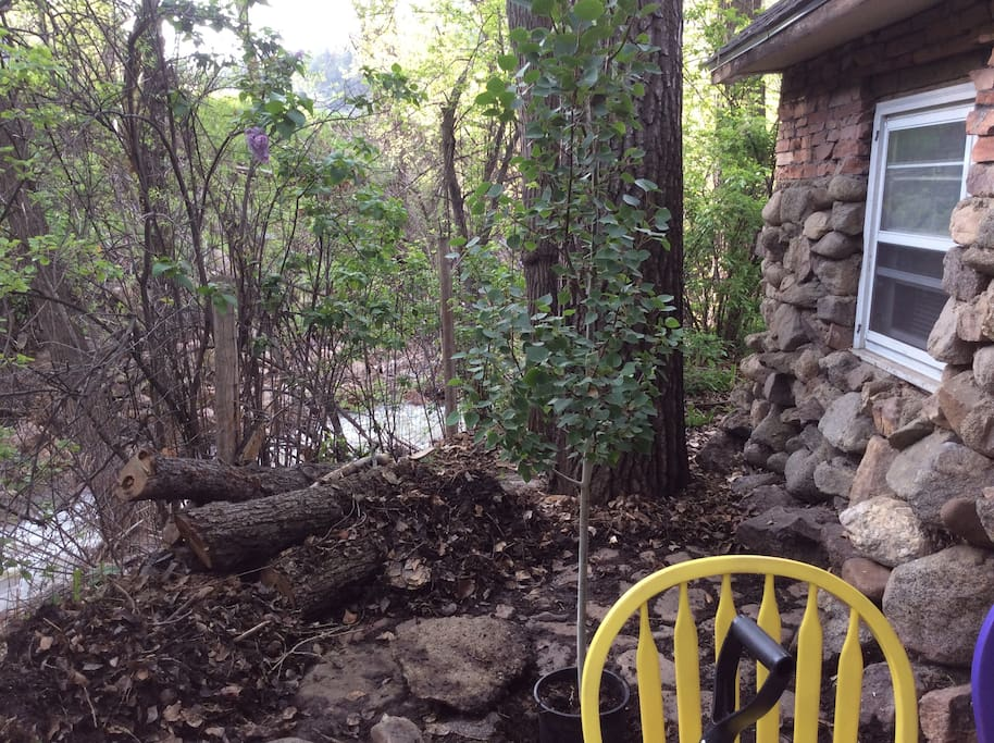 Cottage back patio overlooking Fourmile Creek.