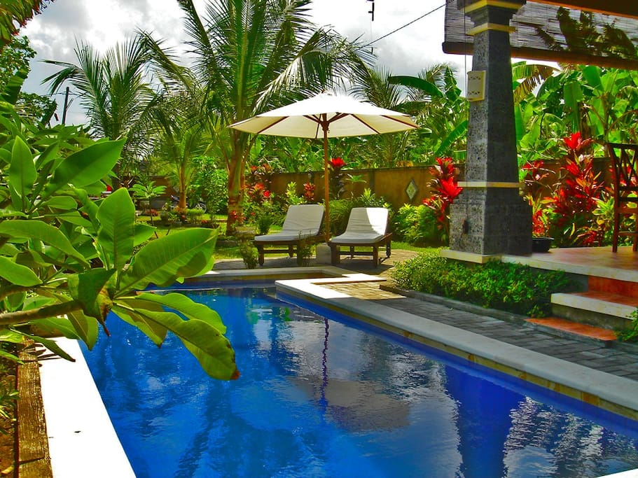 Grab a book and lie by the pool with a nice cold Bintang