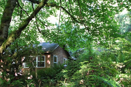 Magical Forest Cottage Retreat - Quilcene - Ev