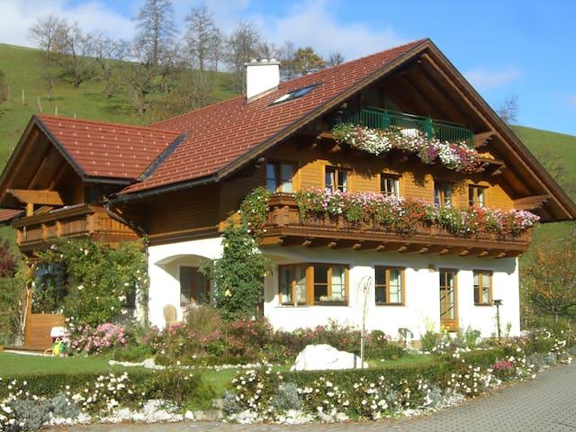 Haus Loidl St. Gallen - Apartment