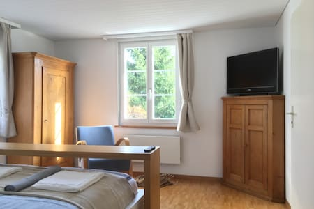 The comfortable Double-Bedroom Christoph Uni/Olma - Sankt Gallen - 獨棟