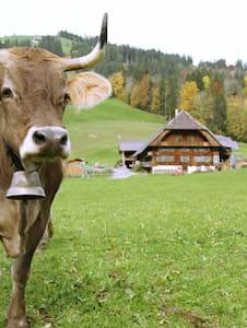 Ferienwohnung in altem Bauernhaus - Schangnau