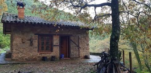 Cabana de castanha no deserto em Gredos