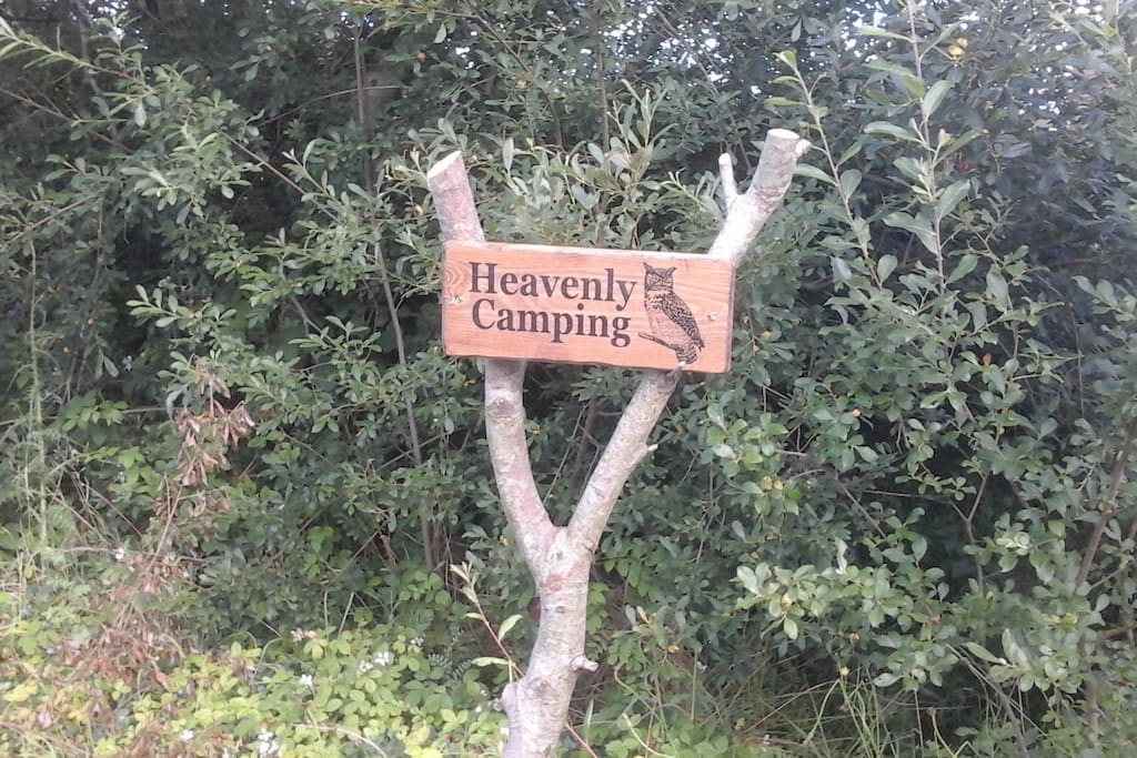 Heavenly camping