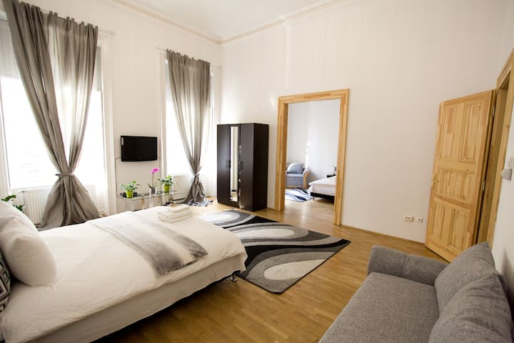 Suite in Erzsebet krt WI Fi 90 mq for comfort H - Budapest - Apartment