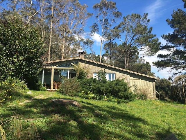 Wonderful house in Corrubedo        - Ribeira - House