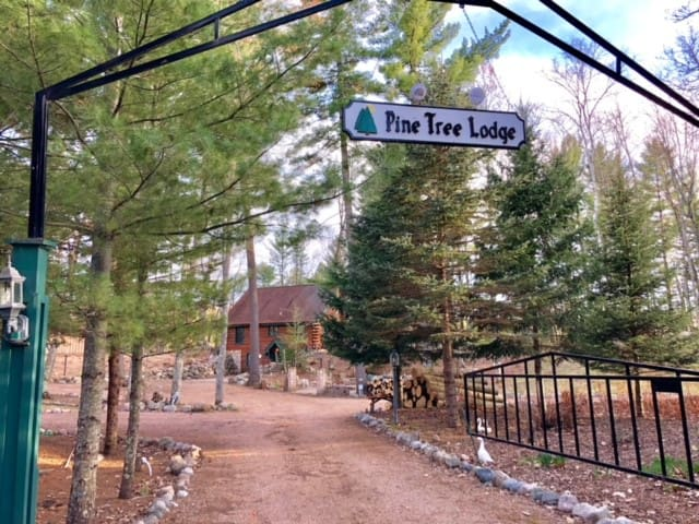 Pine Tree Lodge