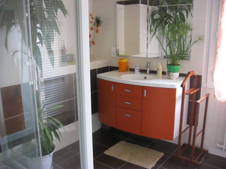 chambre agreable agen centre ville maisons de ville louer agen aquitaine france. Black Bedroom Furniture Sets. Home Design Ideas