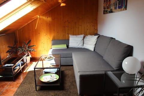 La sala dispone de sofá con chaiselongue convertible en cama, televisión Full HD de 42'' con entrada USB multimedia, reproductor de DVD,  multitud de películas en formato DVD y algunos juegos de mesa. Además, hay libros y guías de viaje