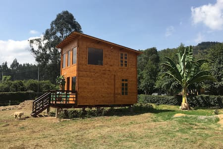 DER  BAUM GLAMPING, CABIN OR LITTLE HOUSE