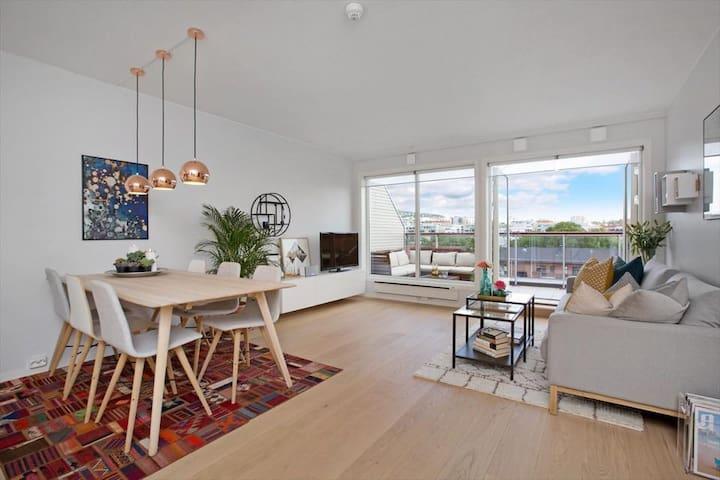 New penthouse, close BI, in hip area of Oslo.