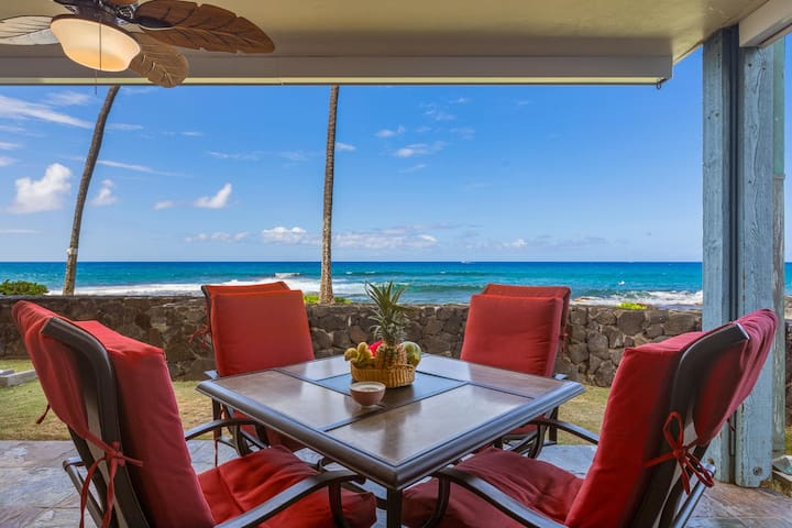 Beautiful Direct Ocean View from the Lanai