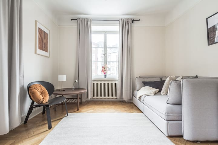 Cozy living room with a sofa that can be made as a bed
