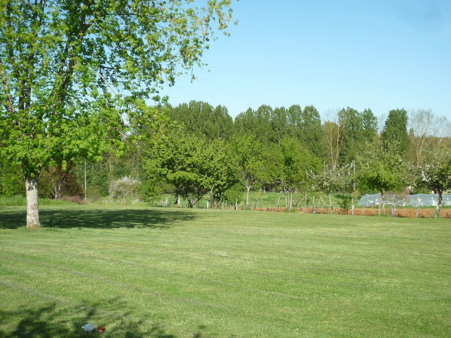 View of the gardens and numerous fruit trees.