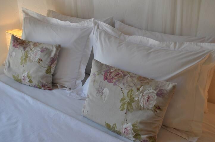 Villa Menorah B&B Larnaca forest view - Larnaca - Bed & Breakfast
