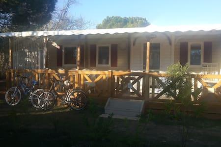 Le top 20 des bungalows louer le grau du roi airbnb occitanie france - Super u le grau du roi port de peche ...
