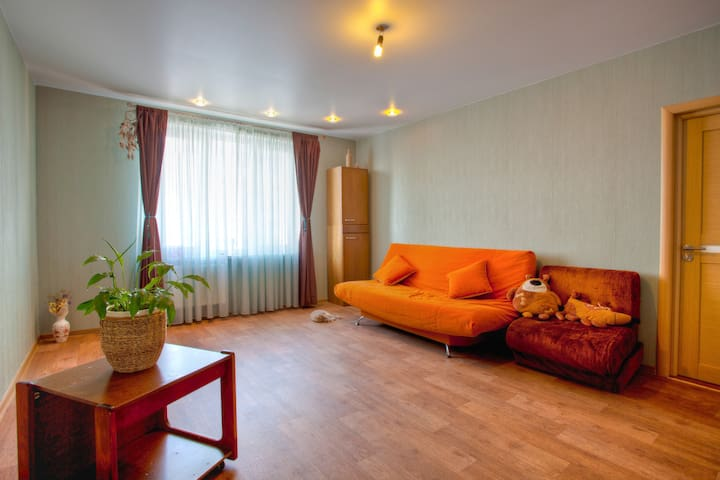 Big room, sophisticated kitchen - Minsk - Apartment