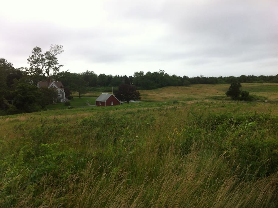 The old Knowles Farmstead.