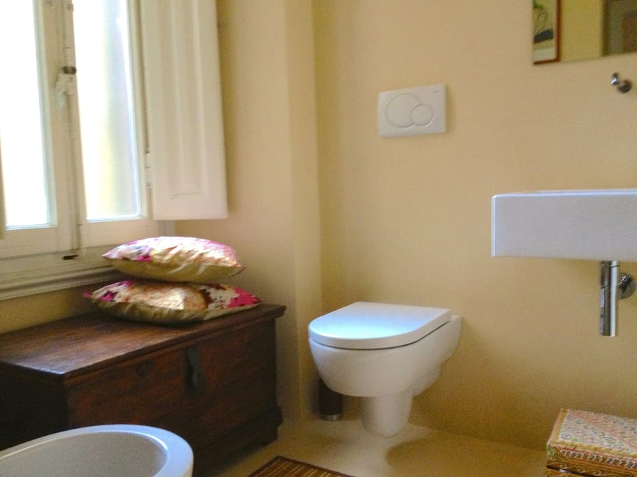 Comfortable large bathroom with bathtub and shower