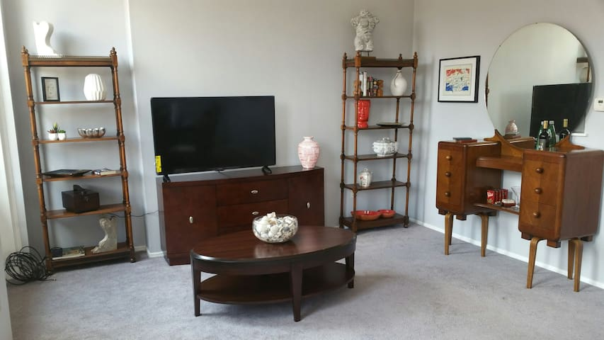 Very Large Two Bedroom Near AGH & Heinz Field