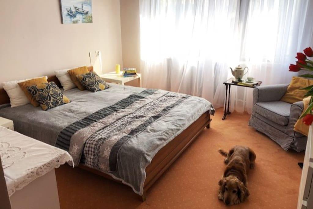 Jasna i przyjemna sypialnia