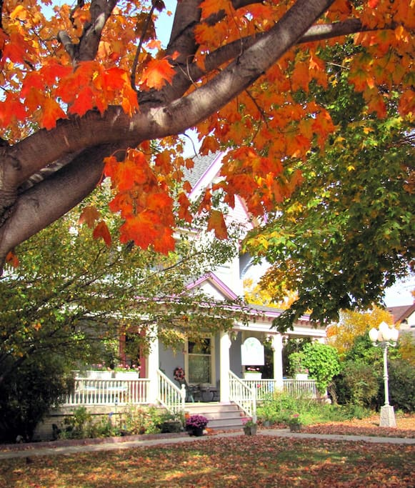 Our Sherwood Forest room looks out at beautiful gardens in the summer and maple trees in the fall.
