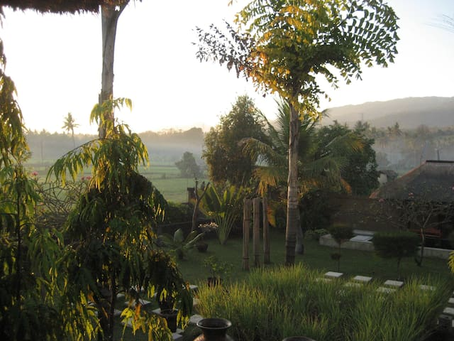 Room with gorgeous ricefield views