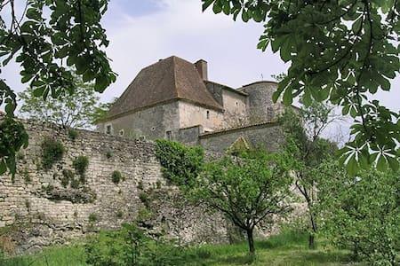 Chateau D'ax - Entire Estate - Saux - 獨棟