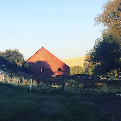 The barn as seen from the redwood deck around the home.
