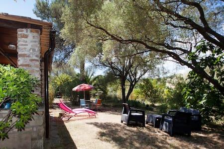 Corsica villa St Florent 2-8 people - Oletta - Villa - 0
