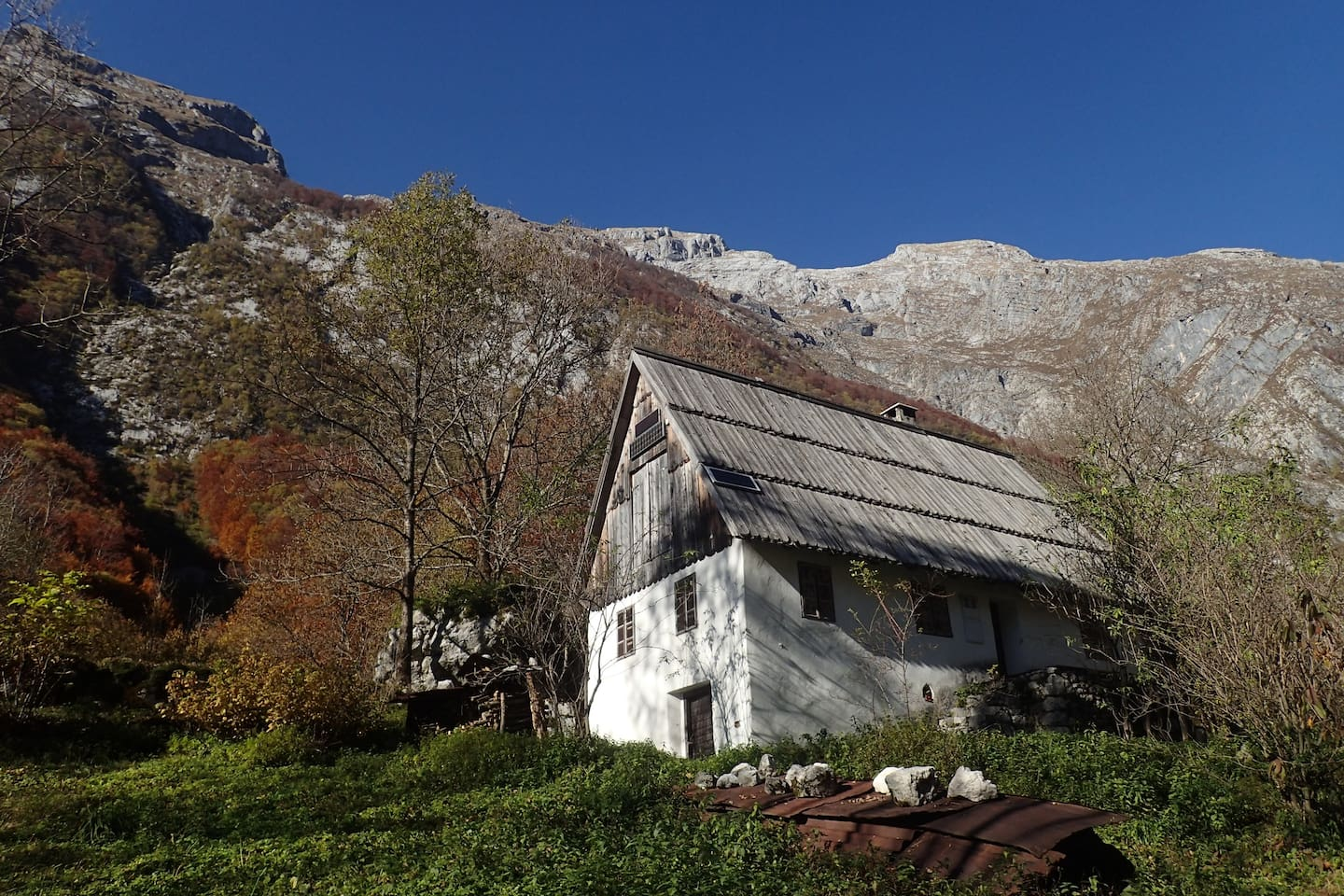 Elderflower house in a hearth of the Triglav national park