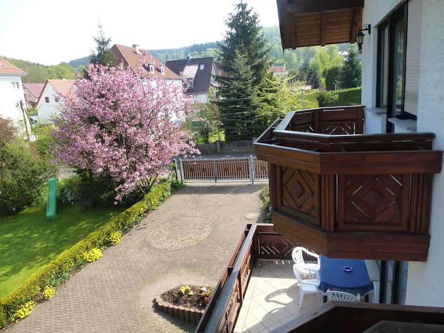Blick aus dem Gästehaus