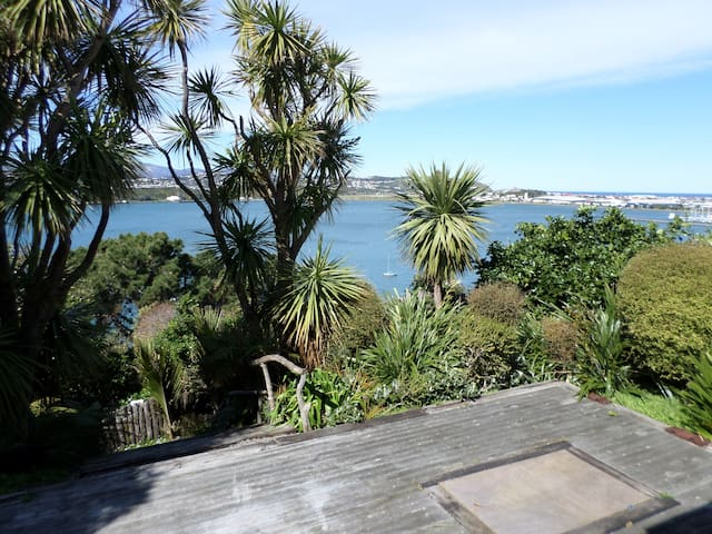 Stunning view, close to city. - Wellington - House