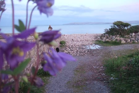 Seaside Chalet, Barna, Galway. - Barna - Chalet