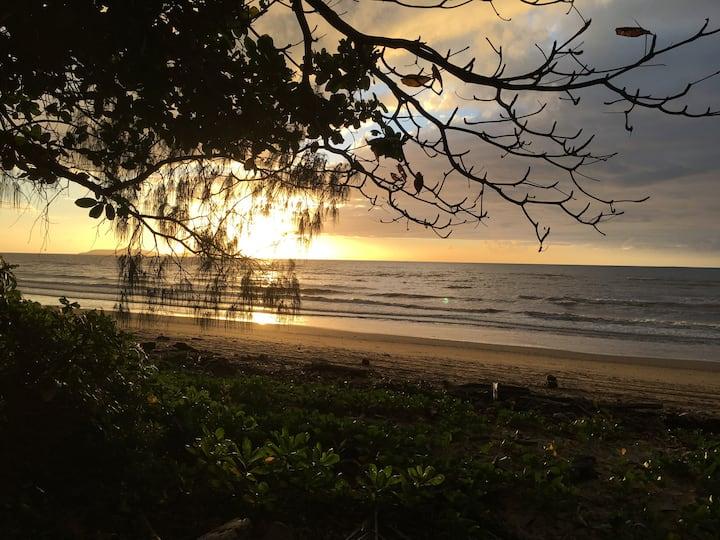 Daintree Beach Studio - BEACH FRONT ACCOMMODATION