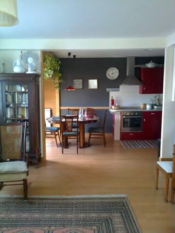 Donostia-San Sebastian, piso entero - San Sebastian - Appartement
