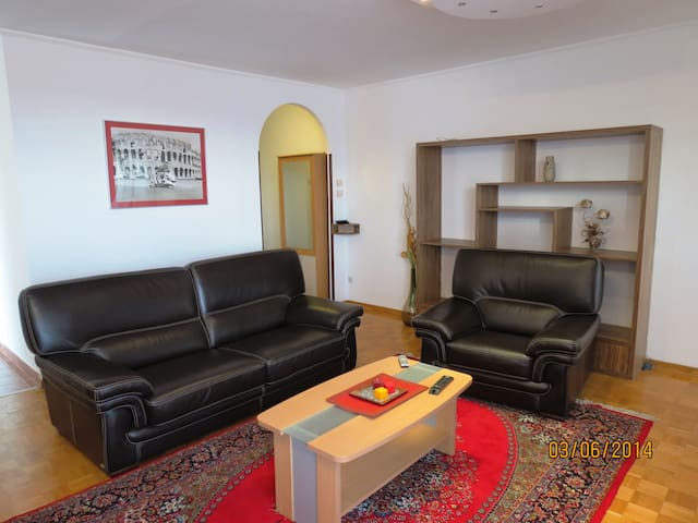 Quiet, bright & spacious apartment - Belgrade - Apartment