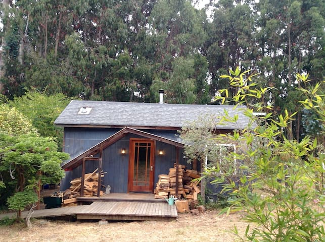 House of the Forest Dunes - Fort Bragg - Casa